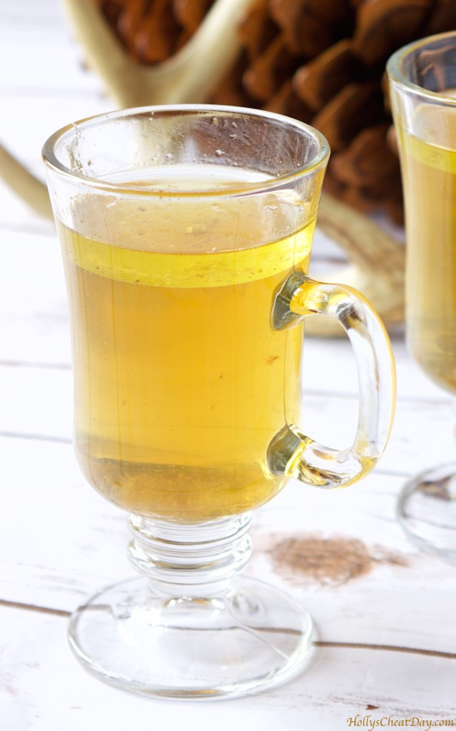 how-to-series-bone-broth| HollysCheatDay.com